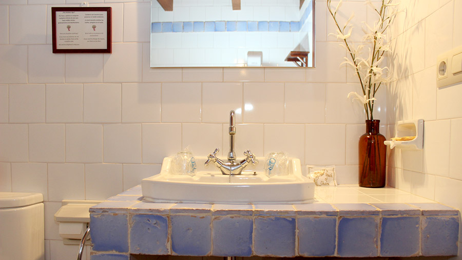 baño habitación perros mascostas