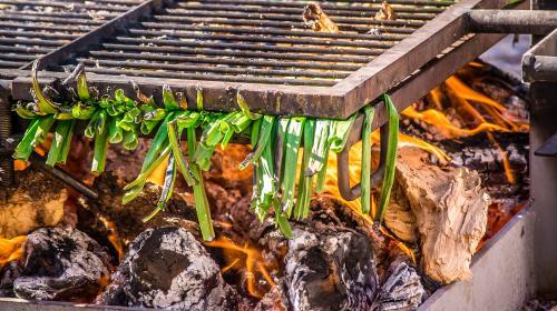 calsot en enero en Consuegra